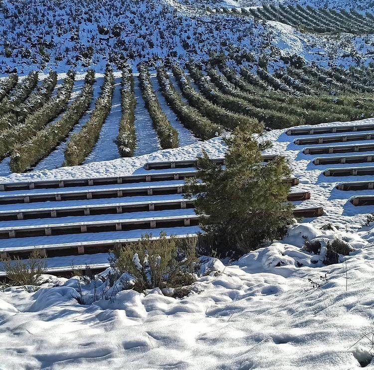 solarbloc resiste a la nieve